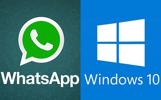 Все о скачивании и установке WhatsApp на ПК с Windows 10