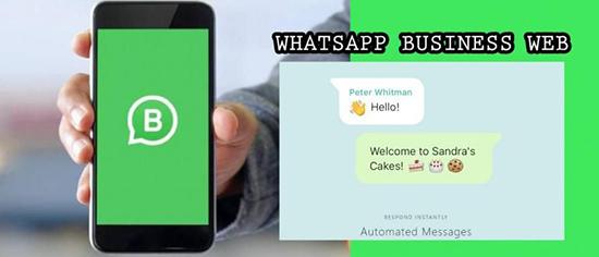Скачивание и установка WhatsApp Business Web на компьютер