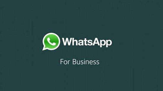 Скачивание и установка WhatsApp Business через APK