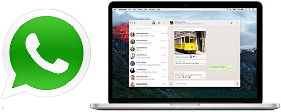 Скачивание и установка WhatsApp на Макбук Mac OS