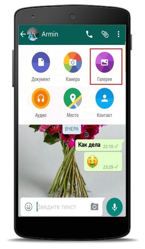 Где взять красивые GIF для WhatsApp