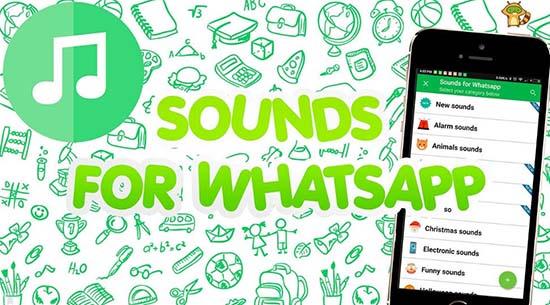 Как поставить песню в статус WhatsApp
