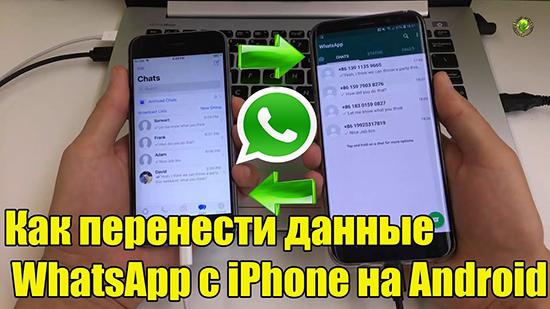 Перенос WhatsApp с iPhone на телефон Android