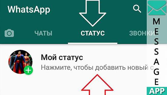 Можно ли незаметно посмотреть статус в WhatsApp