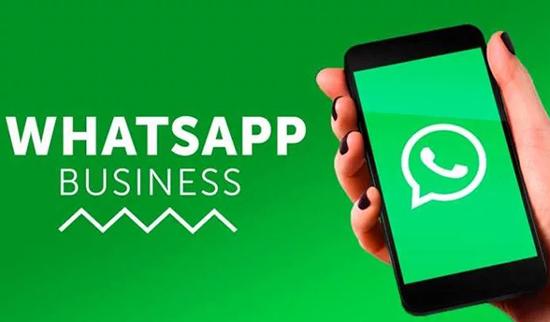Раскрутка и заработок на группе в WhatsApp