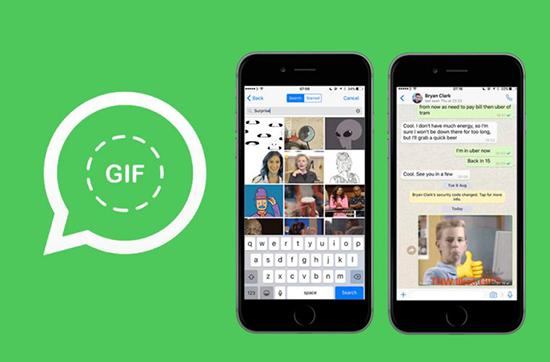 Создаем, находим и отправляем GIF в WhatsApp