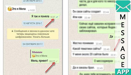 Почему в WhatsApp галочки не синеют при прочтении