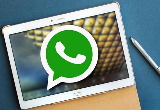 Что такое администратор группы в WhatsApp: FAQ по функционалу