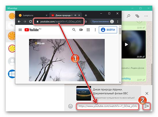 Как вставить видео с Youtube в WhatsApp без ссылки