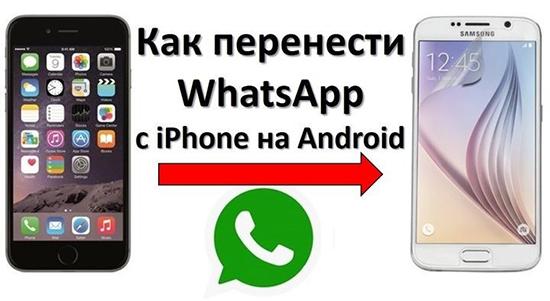 Как восстановить переписку в WhatsApp с Android на iPhone