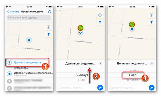 Как через WhatsApp отследить геолокацию человека