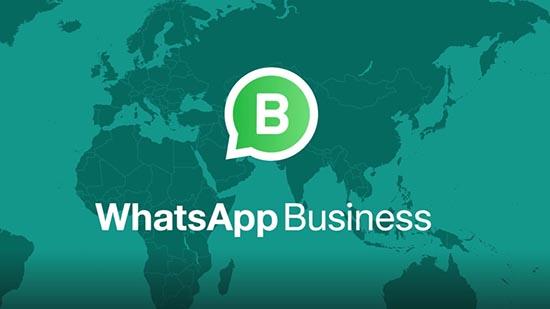 Что такое Бизнес аккаунт в Ватсапе и для чего он нужен