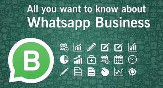 В чем разница между простым WhatsApp и WhatsApp Business