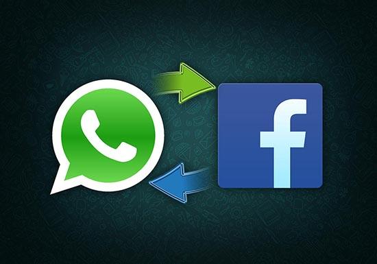 Что в WhatsApp значит from Facebook