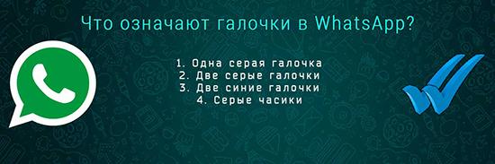 Что обозначают галочки на сообщениях в WhatsApp