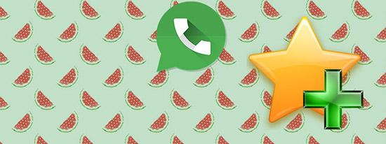 Где хранится избранное в WhatsApp: инструкция по использованию