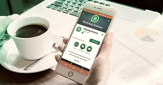 Создание массовой рассылки сообщений в WhatsApp Business