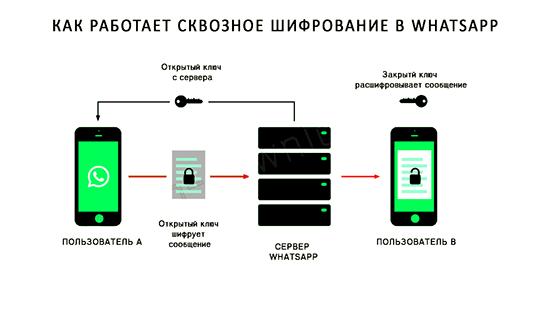 Что значит защищено сквозным шифрованием в WhatsApp