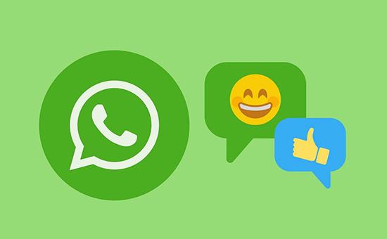 Как искать и где скачивать видео для WhatsApp