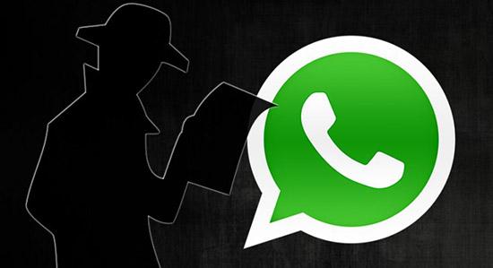 Возможности WhatsApp Spy: где скачать, инструкция по использованию