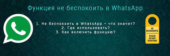 Что значит функция не беспокоить в WhatsApp