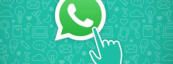Как сделать ссылку на WhatsApp на сайте