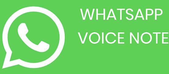 Что такое WhatsApp Voice Notes на телефоне